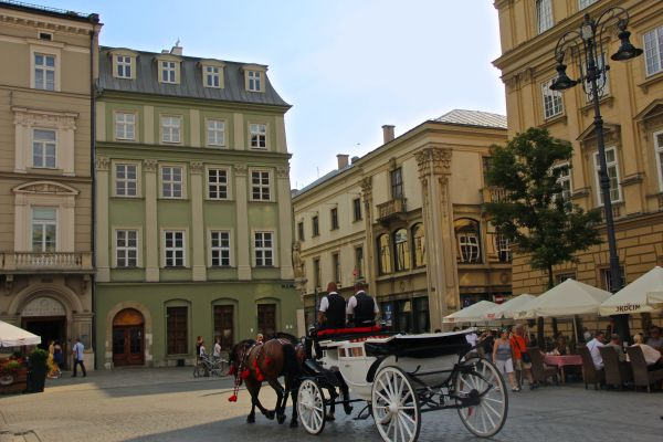 krakow main square horse