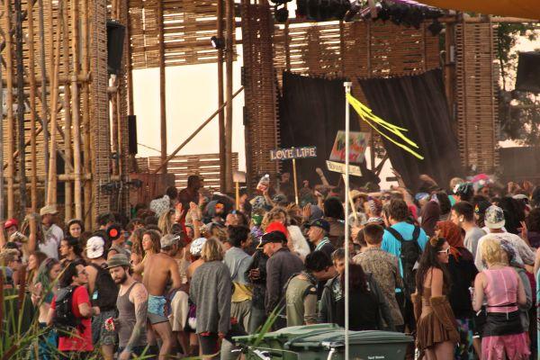 festival crowd 2