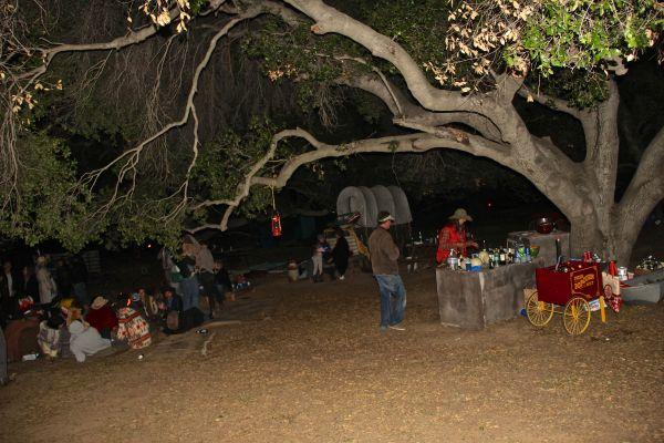 bar tree hangout
